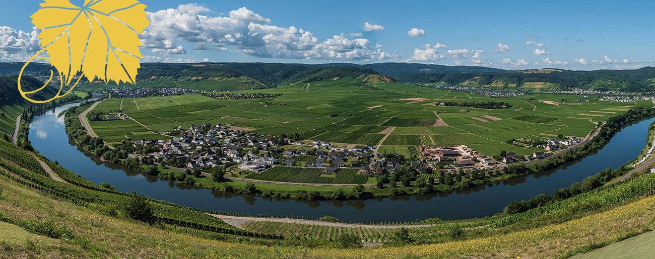 Ferienweingut Winnebeck - Startseite_05
